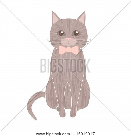 Sitting Gray Pet Cat With Textured Fur Wearing Bow Tie