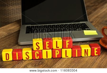 Self Discipline written on a wooden cube in a office desk