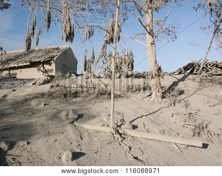 A house lies destroyed by ash on the upper slopes of Java's most active volcano Mount Merapi after a volcanic eruption  in Central Java Indonesia. poster