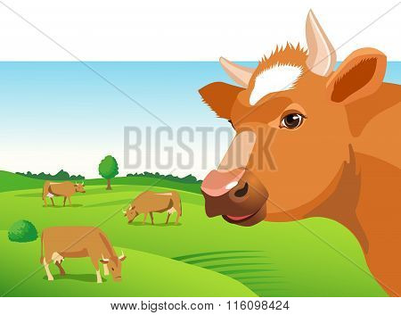 Cow Face Vector Image. Cow Face on a Green Field. Farm Animal. Cow Face Icon. Cute Cow. Cow Face.