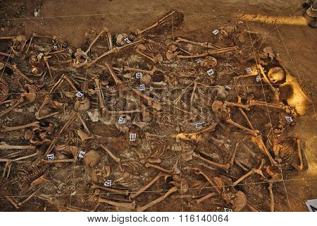 Mass grave of the Spanish Civil War (1936)