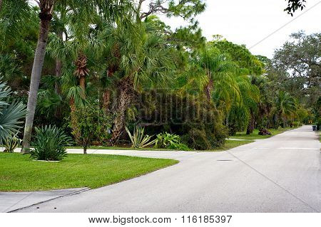 Qualis Walk Lush Tropical Street