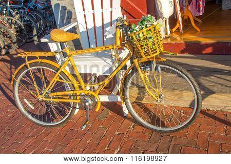 Bicycle - Bamboo