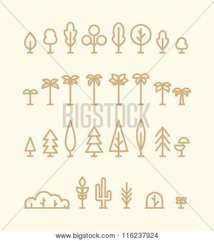 Set kinds trees palms fir spruces bushes linear