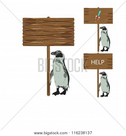 Penguin holding a sign