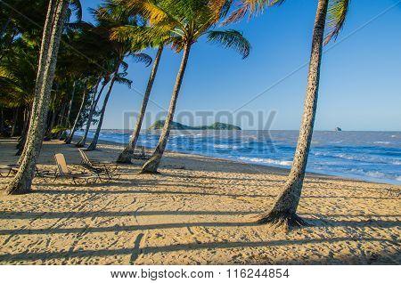 Beach In Palm Cove, Australia