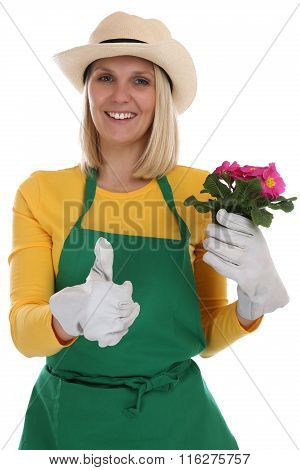 Gardener gardner woman with flower gardening garden occupation thumbs up isolated on a white background poster