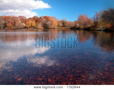 Autumn On Kahlers Pond