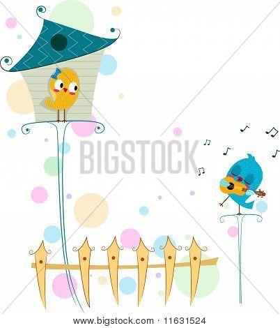 Lovebird Serenade