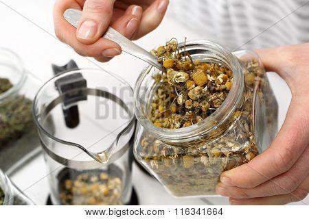 Chamomile herbal chamomile tea.