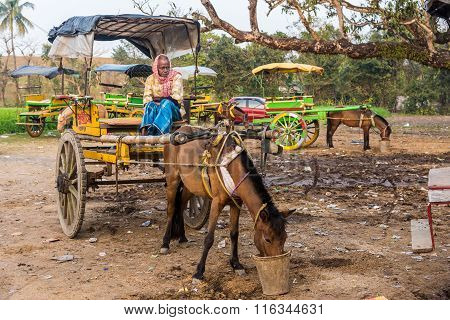 Vintage Horse Cart And Coachman