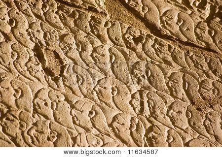 Ancient Egyptian Army, Kadesh