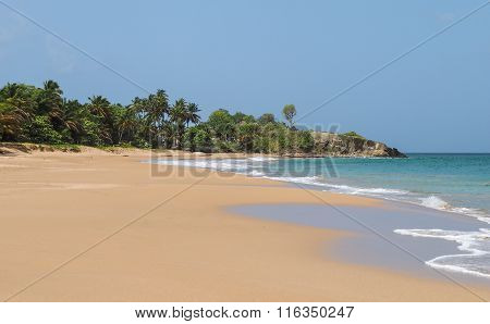 La Perle Beach Landscape In Basse Terre Guadeloupe