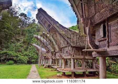 Tongkonan Traditional Rice Barns