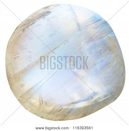Tumbled Moonstone (adularia) Natural Mineral Gem
