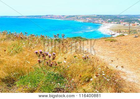 San Giovanni Di Sinis Beach On A Summer Day