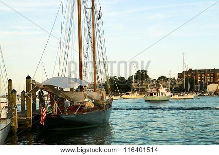 Sail Boat in Harbor