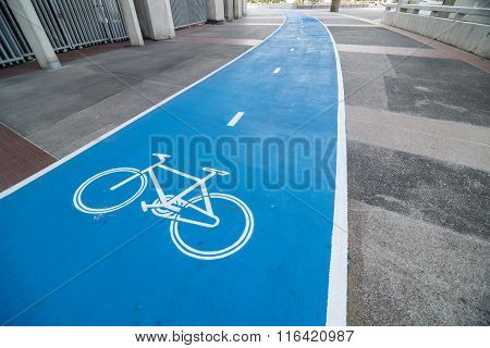 Point Of View For Cyclist On Bike Lane
