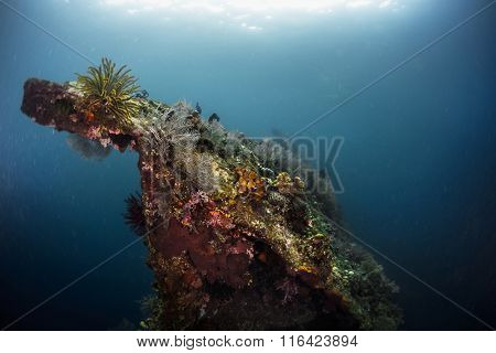 Underwater view of the part of ship wreck of USAT Liberty, Tulamben, Indonesia