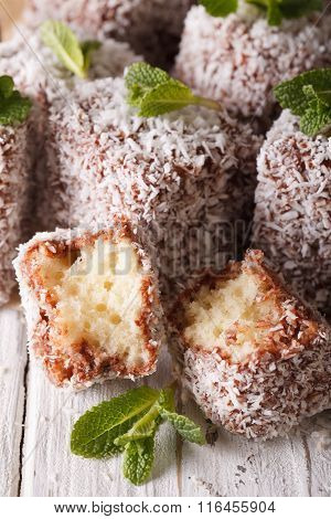 Australian Lamington Cake With Coconut Macro. Vertical