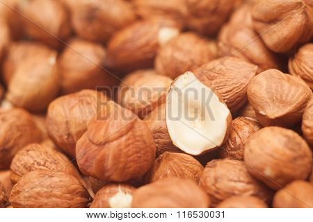 Shelled Hazelnuts
