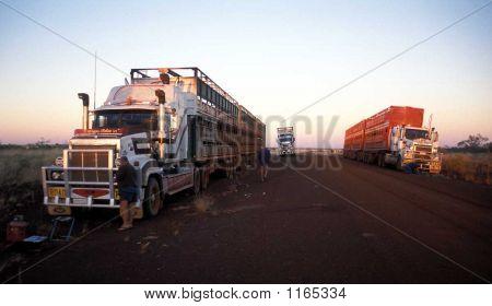 Trucks And Drivers