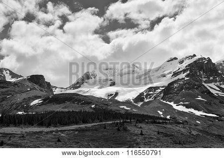 Mount Athabasca Scenic View