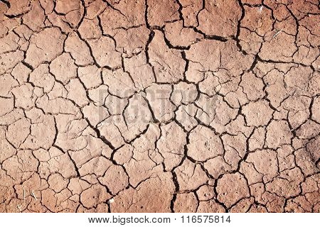 Drought, The Ground Cracks