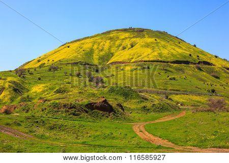 Legendary Golan Heights. Fresh green grass and a picturesque dirt road