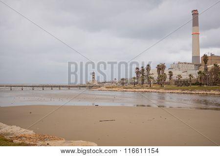 Yarkon Stream At Winter, Tel-aviv