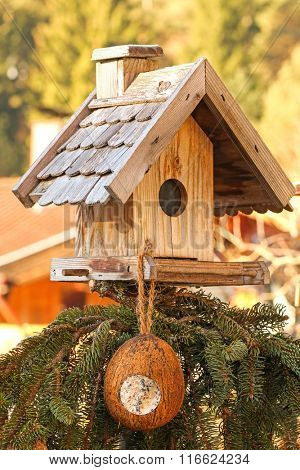 Wooden bird feeder decorated with pine tree branches with a coconut shell suet treats hanging