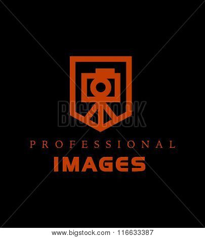 Vector template of flat modern photo logo.