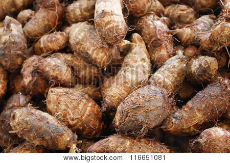 The group of tasty taro at the food street market