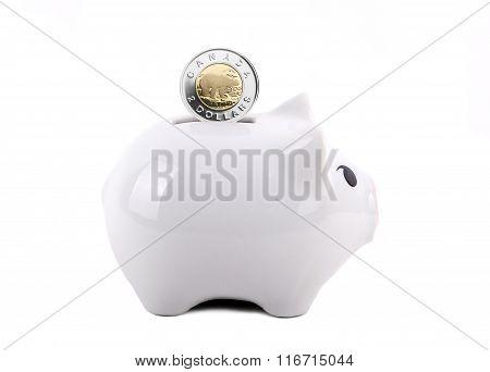 Conceptual Piggy Bank With Coin Deposit