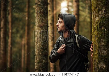 Young Man Exploring A Forest