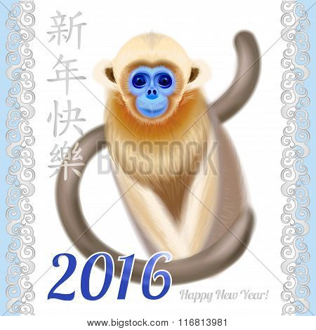 Chinese New Year on white background