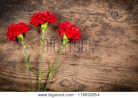 three carnations on wooden background