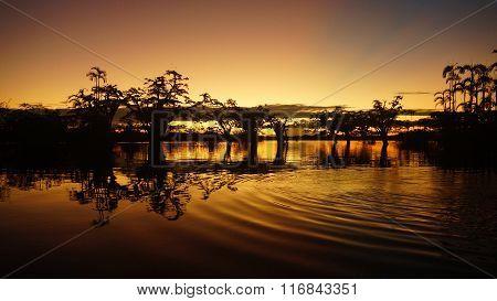 Yellow sunset in Cuyabeno lagoon