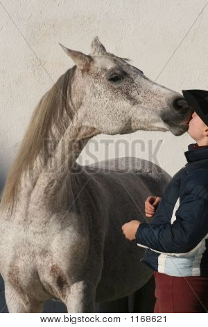 sweet love between a cowgirl and her horse. poster