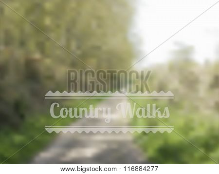 Bokeh Style Country Walk Background