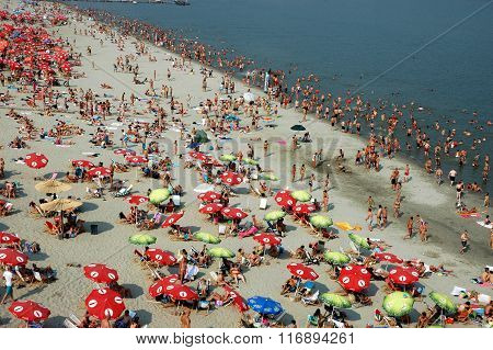 Swimming and sunbathing on the Danub's beach Strand in Novi Sad, Serbia