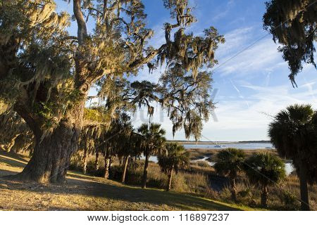 Beaufort, South Carolina waterfront with live oaks and sailboats