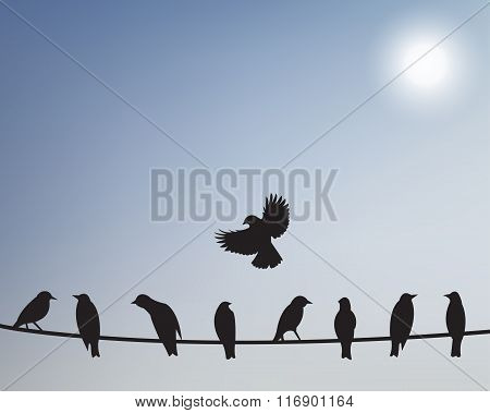 Birds On Wires. Vector Illustration.
