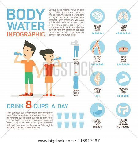 Vector flat style of body water infographic concept. Concept of drinking water, healthy lifestyle. B