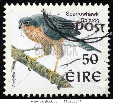 Postage Stamp Ireland 1998 Sparrowhawk, Bird Of Prey