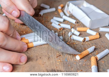 Anti-smoking background. Sliced cigarettes.