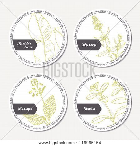 Set of stickers for package design with kaffir lime, borage, hyssop, stevia
