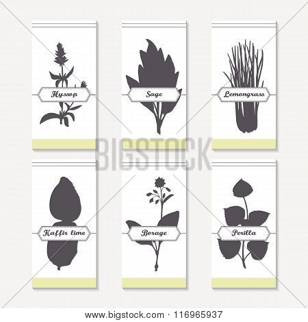 Spicy herbs silhouettes collection. Hand drawn hyssop, sage, lemongrass, kaffir lime, borage, perill