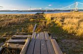 Old wooden pier which was for the Aust ferry that crossed River Severn to Beachley. United Kingdom. poster