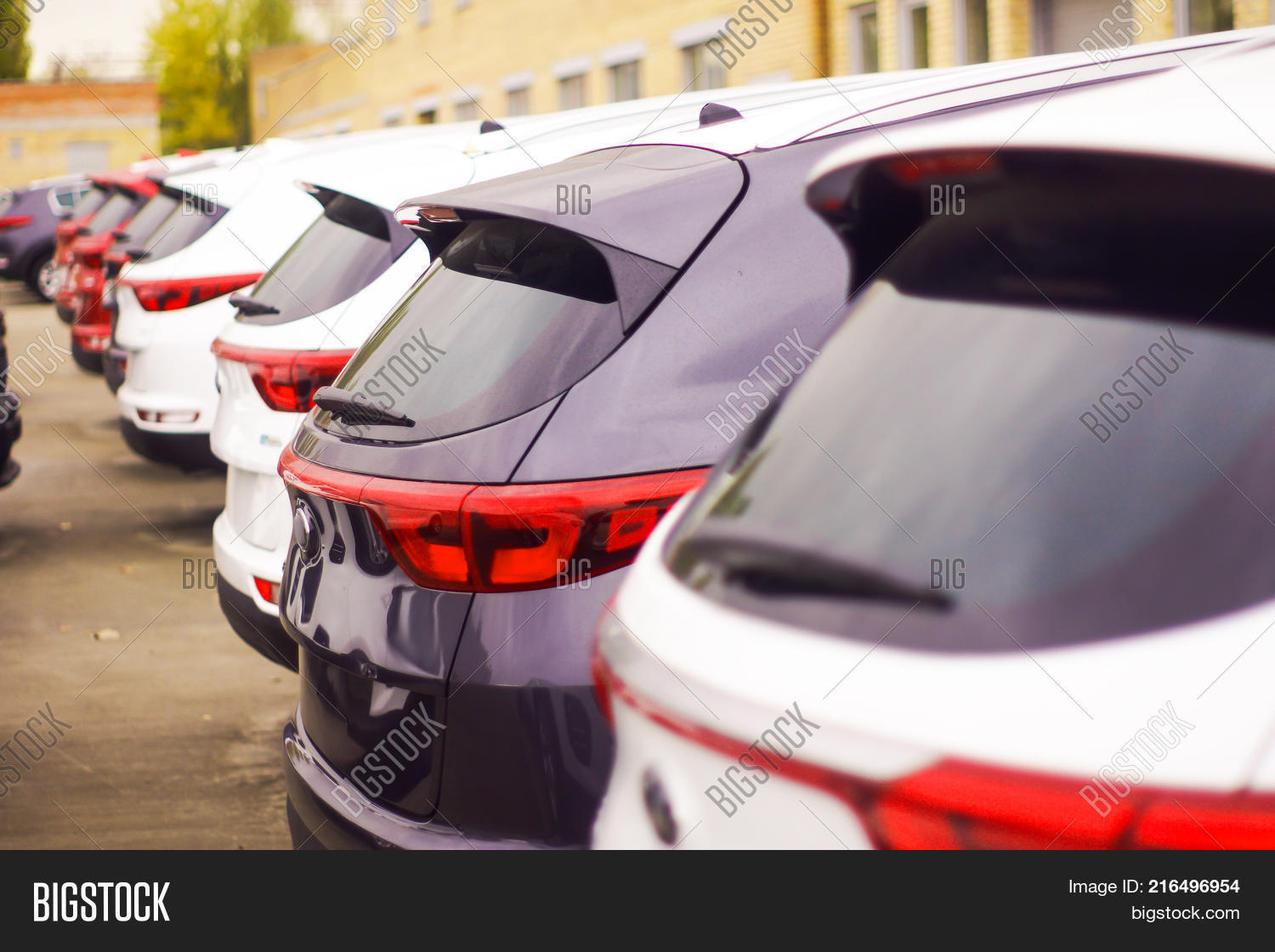 Cars Sale Stock Row  Image & Photo (Free Trial) | Bigstock